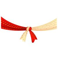 Tilak(Pre Wedding Ceremony)