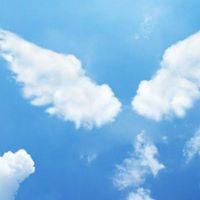 Angels and Spirit Guides Workshop