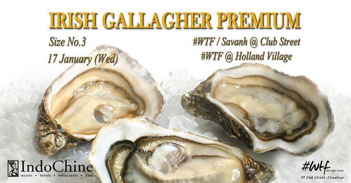 Irish Oysters  2 each  WTFClub St  Holland Village