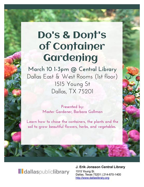 Dos & Donts of Container Gardening