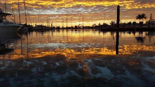 Double Dive - Moreton BayNorth Stradbroke Island - DiveQuest