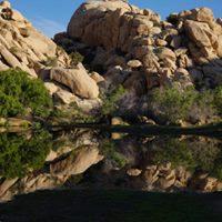 Artist Program Recording Sounds in Joshua Tree National Park