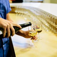 Guided Tours at Lulu Island Winery