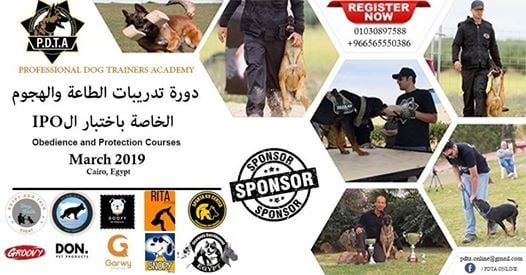 Obedience and protection courses and IPO test