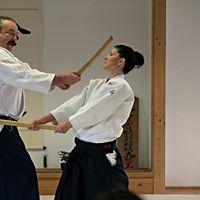 1st International Aikido Seminar