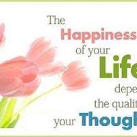 Breda Happiness Programma
