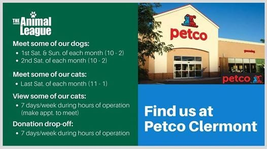 Meet-and-Greet Adorable Adoptables at Petco | Clermont
