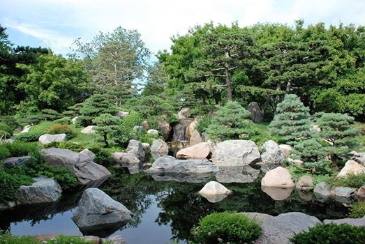 Japanese Garden   Adult Class