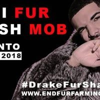 Anti-Fur Flash Mob Toronto  Fur Auction Blockade