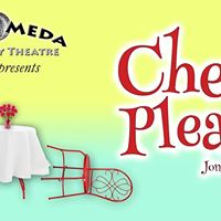 Check Please (Dinner Theater)