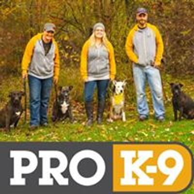 PRO K-9 | In-Home Training Professionals