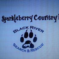 Meet and Greet at Sparkleberry County Fair