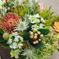 Floral Design Basics - Colors