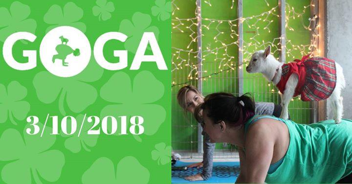 GOGA Goat Yoga in GREEN