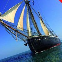 South Coast Sailing Holiday