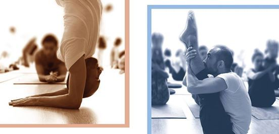 Formacin de Profesores de Hatha Raja Yoga