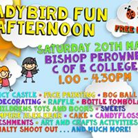 The Ladybird Trust fun afternoon