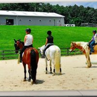Horse Discovery Day for Adults