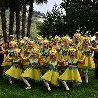 VI International Spring Festival &quotLago di Garda&quot