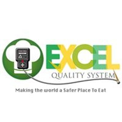 Excel Quality System