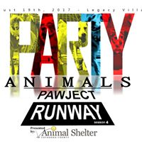 Paw-ject Runway