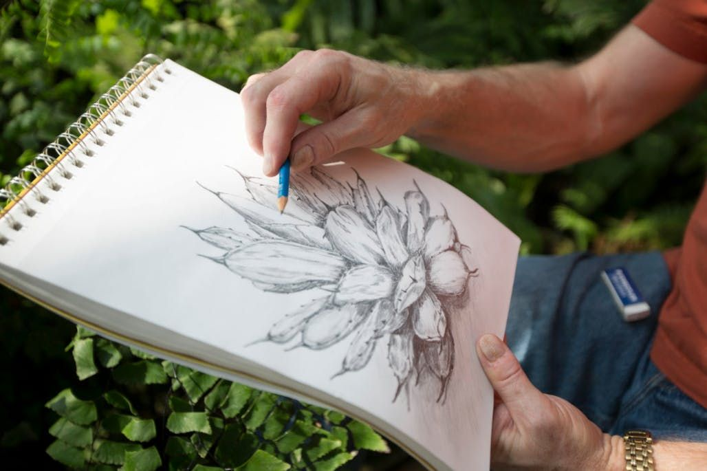 Botanical Drawing Senior Series