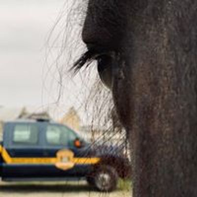 Delaware State Police Mounted Patrol Unit, Inc.