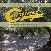 2017 Corning Olive Festival