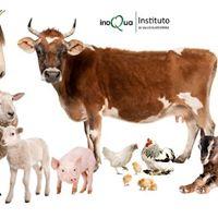 Oviedo Curso de Bienestar animal durante el transporte