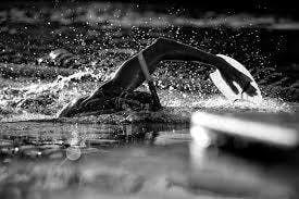 FreeStyle Swim Session