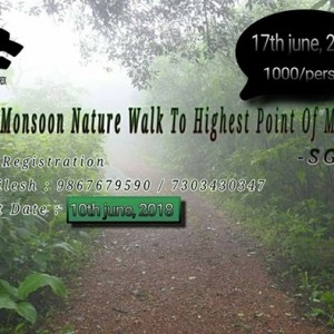 Early Monsoon Nature Walk To Highest Point Of Mumbai - SGNP