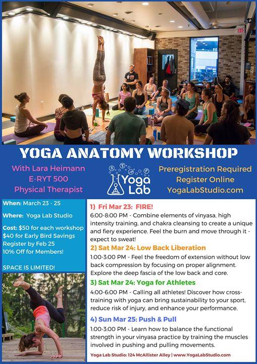 Yoga Anatomy Workshop With Lara Heimann At Yoga Lab State College