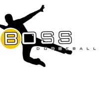 BOSS Dodgeball Winter Drop In 1 (out of 4) - Mon