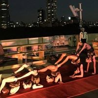 Rooftop Summer Circus dancers wanted