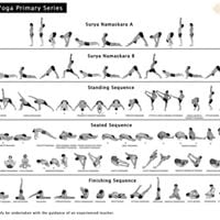Ashtanga Full Primary Series - Led Class