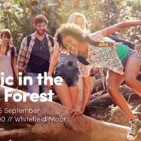 Official Freshers Picnic in the New Forest
