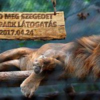 SZTE EHK Ismerd meg Szegedet - Vadaspark Ltogats