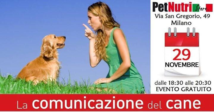 La comunicazione del cane