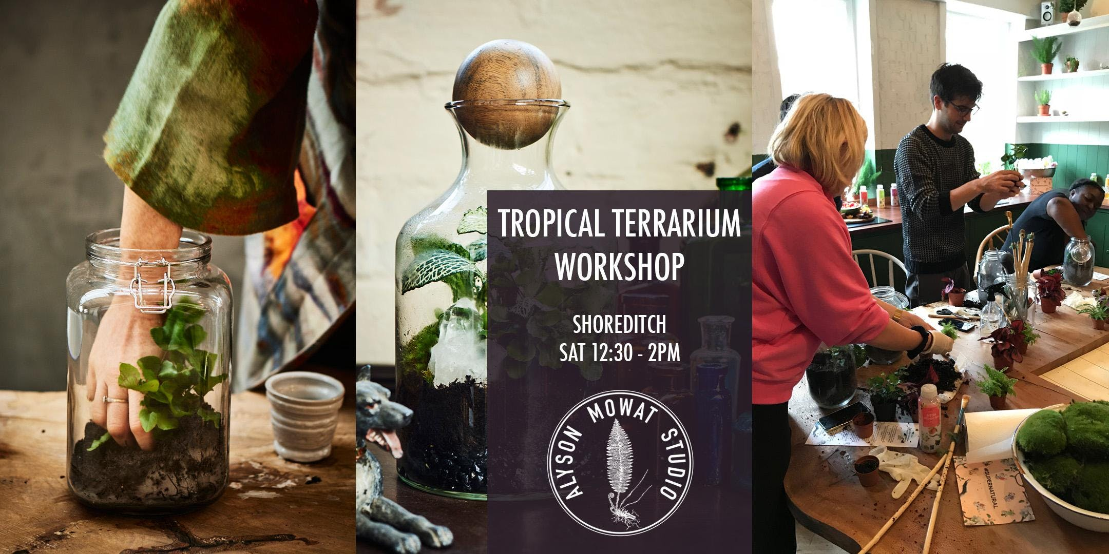 TROPICAL TERRARIUM WITH TOOL MAKING - The steamy one