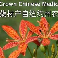 Production of Chinese Medicinal Herbs in NYS