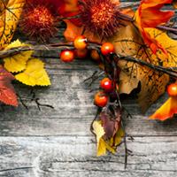 Thanksgiving Centrepiece Workshop