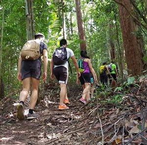 Y Treks Gunung Pulai (1 July 2018)