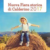 Fiera storica di Calderino - Bologna