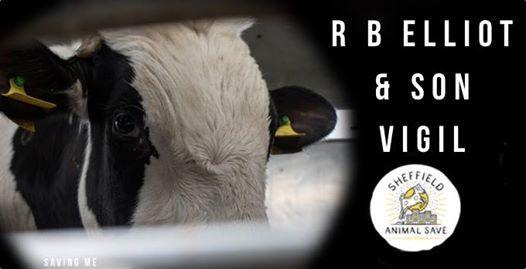 R B Elliot & Son Vigil  Sheffield Animal Save