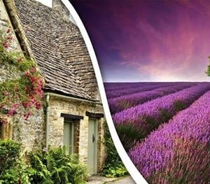 Cotswolds villages and Lavender Fields