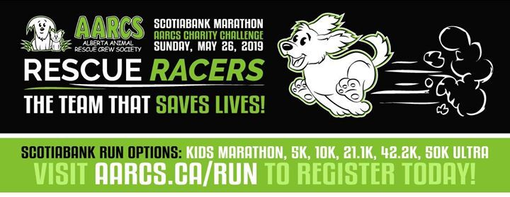 Scotiabank Marathon Charity Challenge for AARCS