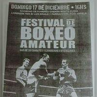 Festival De Boxeo 17122017