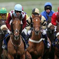 Cheltenham Races - LIVE on the Big Screen