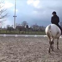 Gratis lezing over de scheefheden van paard en ruiter