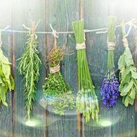 Spiritual Herbs and Super Foods